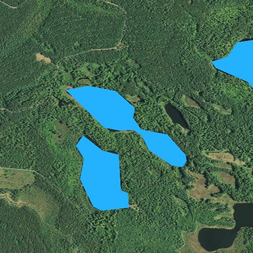 Fly fishing map for Beetle Lake, Minnesota