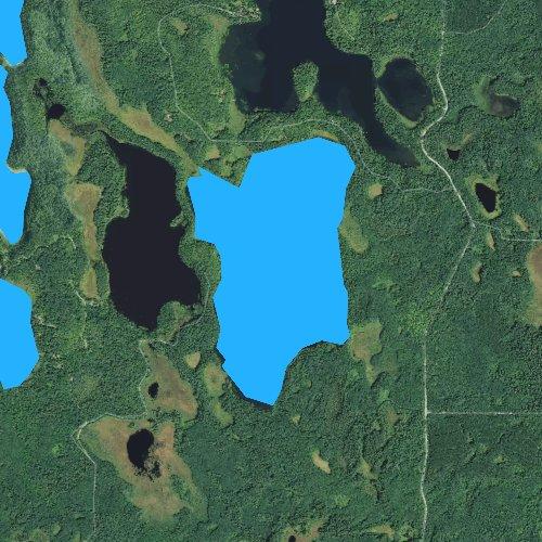 Fly fishing map for Big Dick Lake, Minnesota
