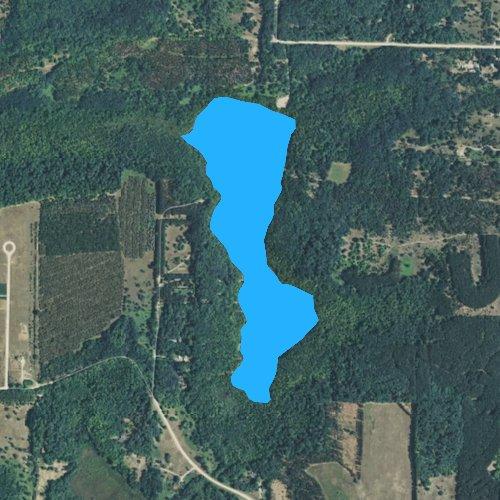 Cedar Lake: Grand Traverse, Michigan Fishing Report