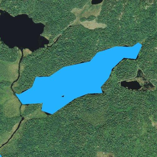 Fly fishing map for Chippewa Lake, Minnesota