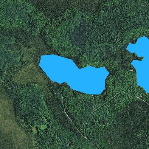 Fly fishing map for Lake Gordon, Wisconsin