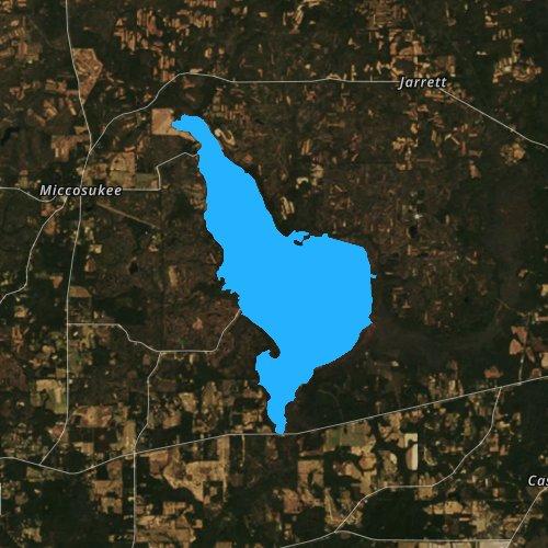 Fly fishing map for Lake Miccosukee, Florida