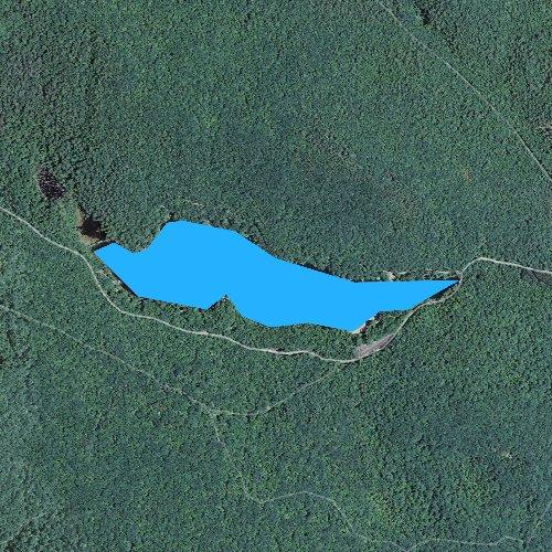 Fly fishing map for Laurel Lake, Massachusetts