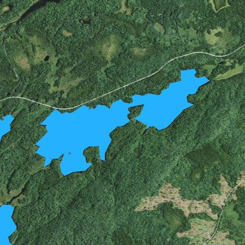 Fly fishing map for Lichen Lake, Minnesota