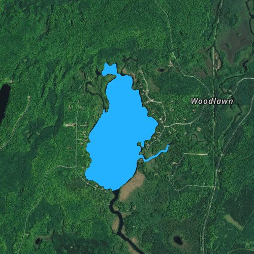 Fly fishing map for Lily Lake: Forest, Wisconsin