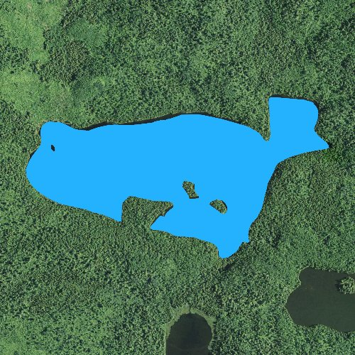 Fly fishing map for Little Trout Lake: Cook, Minnesota