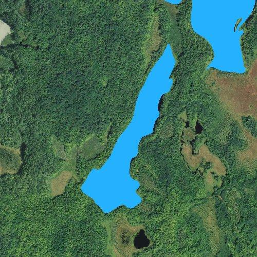 Fly fishing map for Long Lake: Itasca, Minnesota