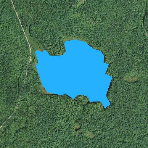 Fly fishing map for Tomash Lake, Minnesota