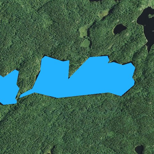 Fly fishing map for Town Lake, Minnesota