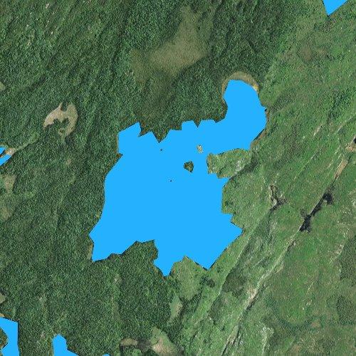Fly fishing map for Turtle Lake, Minnesota