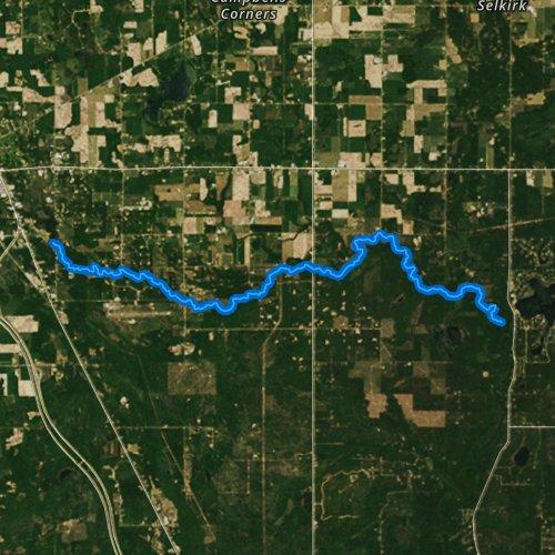 West Branch Rifle River Michigan Fishing Report
