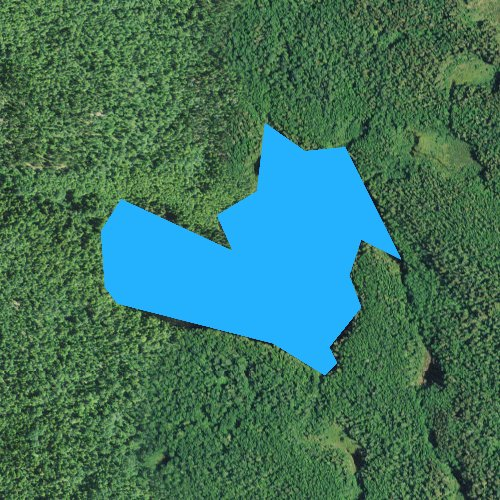 Fly fishing map for Whale Lake, Minnesota