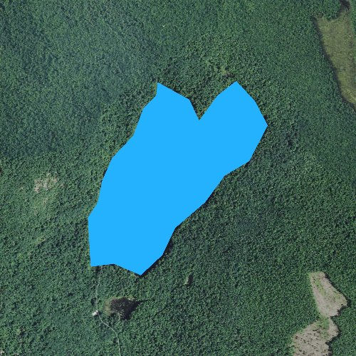Fly fishing map for Willard Pond, New Hampshire
